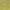 Зеленый  ковролин длинный ворс